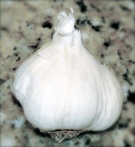 Fresh Garlic - loud, but essential for a really good party